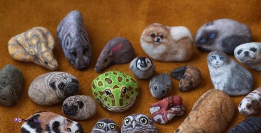 Cute Names for Pet Rocks